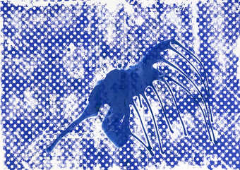 blue lacquer over blue screenprint on paper