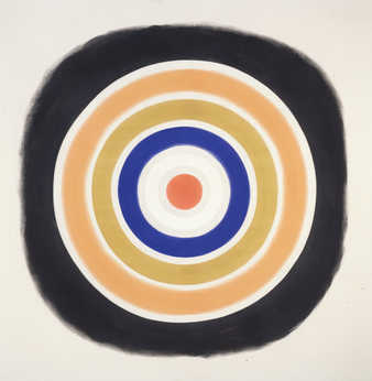 target w/ rings of differnt colors