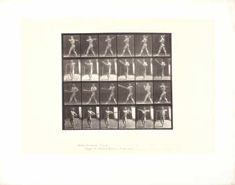 "Mulitple frames of a nude man swinging a baseball bat.  Printed under image ""Animal..."